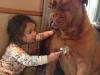 8730110-r3l8t8d-650-7172010-r3l8t8d-650-cute-big-dogs-and-babies-17