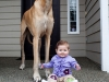 8731060-r3l8t8d-650-7172060-r3l8t8d-650-cute-big-dogs-and-babies-35
